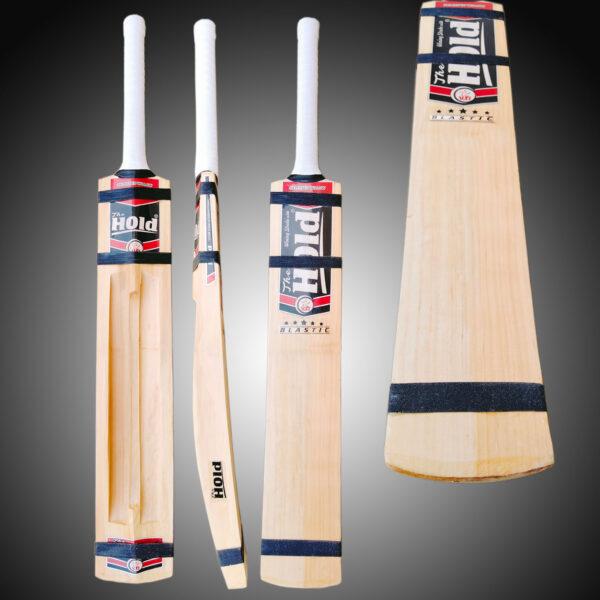 The hold cricket bat